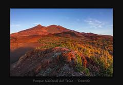 Parque Nacional del Teide (MC--80) Tags: parque nacional del teide tenerife