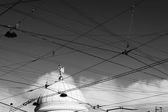 The angel in the lattice (ivan_ko) Tags: architecture bw blackandwhite lattice angel nikon d3000 afs 1855 nikkor