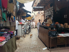 Zoco de Marrakech (dorieo21) Tags: zoco marruecos morocco maroc marrakech marrakesh souq souk