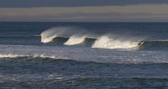 Windswept, the White Horses (brucetopher) Tags: ocean beach wave waves water sea seascape surf surfing surfer breaker breakers break
