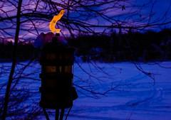 Solitude standing (Jean-Pierre Bérubé) Tags: jeanpierrebérubé jpdu12 flames flamme feu fire flickrfriday bleu blue orange nikon d5300 flammes