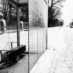 L'hiver, on attend souvent avec impatience... (woltarise) Tags: streetwise iphone7 montréal bld pieix attente autobus arrêt stm hiver