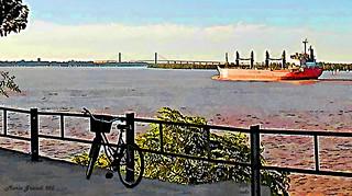 Series: Bicycles Around the World - N13