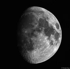 Moon Mosaic (testdummy76) Tags: astrofotografia astrofotografie astronomie astrophotography zwoasi178mc mond astronomy lunarimaging moon astro explorescientific zwoasi weltraum lunar