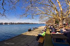 Maschsee im Februar (r.wacknitz) Tags: hannover niedersachsen maschsee februar sunday sunny spring winter nikond3400 tamron1024 luminar18 personen wasser see himmel park baum