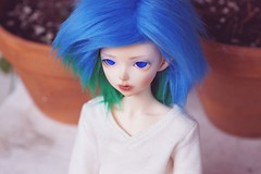 [039/365] Aqua (Ise-Bandit) Tags: abjd bjd asian ball joint doll dollfie resin fairyland fl fairyline minifee mnf momo aqua