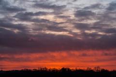 evening sky / @ 55 mm / 2019-02-26 (astrofreak81) Tags: clouds sunset sun wolken sonnenuntergang sonne sky himmel heaven light dawn redsky evening abend red orange dresden 20190226 astrofreak81 sylviomüller sylvio müller