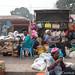Kumasi / Ejisu morning: something's caught their attention