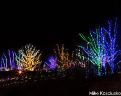 915A6293 (mikekos333) Tags: 2018 december christmas christmaslights coastalmainebotanicalgardens boothbay