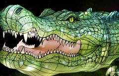 Crocodile (Seeing Visions) Tags: 2018 unitedstates us losangelescounty la arcadia laarboretum moonlightforest chineselanternfestival night dark colorful cloth light crocodile reptile green grass raymondfujioka