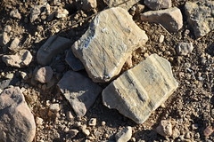 Piedras (esta_ahi) Tags: pedra piedra stone olèrdola penedès barcelona spain españa испания