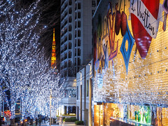 Looking at Keyakizaka (sapphire_rouge) Tags: 東京 夜景 六本木 tokyomidtown 東京ミッドタウン roppongi japan tokyo nightview 欅坂 keyakizaka