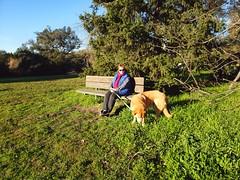 Ragle Ranch Park (Steven P. Moreno) Tags: seabastapool california winecountry stevenpmoreno outdoors nature srevenmorenospix northercalifornia grass trees