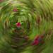Flowery Swirl [ICM]