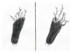 sleep makes so many branches bloom from your feet... (dragoncello64) Tags: genet art arte drawing giuliobenattifeet