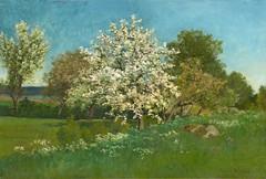 Oscar Torna «Blossoming fruit tree», 1879 г. (Gostya) Tags: oscartorna scandinavian artist art paintings spring