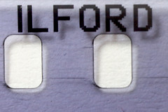 AD8A3326_p_g (thebiblioholic) Tags: 365 film ilford holes closeup macro lensbaby velvet56 kenko kenko68