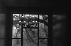 Third Floor Window (Pics from the Bird Cage) Tags: argentique leica leicaiiic hp5 film ilfordhp5plus400 35mm alberta ishootfilm leica3c ilfordhp5plus ilfosol3 edmonton edmontonalberta blackandwhite blackwhite summitar summitar5cmf20 barnack whyteavenue analog analogue bulkfilm classiccamera camera monochrome iso iso400 reflections