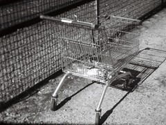 Abandoned shopping trolley (Matthew Paul Argall) Tags: hanimex108f fixedfocus 110 110film subminiaturefilm lomographyfilm 100isofilm blackandwhite blackandwhitefilm shoppingcart shoppingtrolley plasticlens