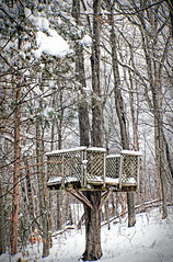 The old treehouse still stands (Bob Gundersen) Tags: bobgundersen gundersen robertgundersen guilford ct conn connecticut country connecticutscenes tree forest cold winter white snow snowy outside outdoor exterior yard home frozen countryside flickr nikon nikoncamera nikond600 d600 camera photo ice icy scenes scene landscape day treehouse
