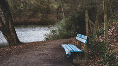 Bench by the lake (bdg-photography) Tags: bench lake pond walkway grafitti graffiti blue nature outside mood broken urbex sombre water cloudy moody naturephotography natur