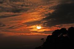 The bush fire smoke colours the morning sky (AlfredSin) Tags: alfredsin canoneos760d canonef70300f456mmlisusm mtdandenong mtdandenongsunrise mtdandenongautumn morningcolour bushfire