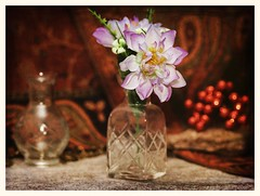 Still Life (N.the.Kudzu) Tags: tabletop stilllife glass vases flowers fake red berries rock paisley canondslr meike 85mmf28 macro lens lightroom preset photoscape texture frame canon430ex flash home