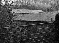 Prohibited (graemes83) Tags: pentax ilford film 135 35mm black white