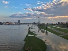 Düsseldorf - Rheinhochwasser im März 2019 (Haeppi) Tags: düsseldorf rhein rhine hochwasser deutschland germany nrw