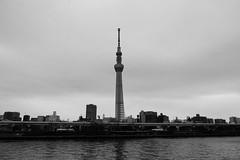 L1010366-2 (Zengame) Tags: lmount lumixs lumixs24105mm lumixs24105mmf4 lumixs24105mmf4macroois leica leicasl leicasltyp601 lマウント sr24105 sl sumidariver sumidagawa architecture japan landmark monochrome river sakurabashi sky skytree tokyo tokyoskytree tower typ601 スカイツリー モノクローム ライカ 日本 東京 東京スカイツリー 桜橋 空 隅田川 東京都 jp