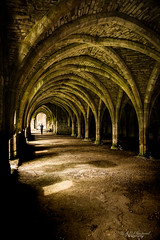 Remains cryptic (Through_Urizen) Tags: architecture category decay england fountainsabbey internal northyorkshire places yorkshire canon canon1585mm canon550d indoor stone stonebuilding vaultedceiling crypt tourism tourist lightandshadow arches gothicarchitecture gothic