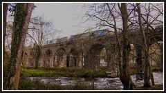 Afon Ogwen Viaduct. (peterdouglas1) Tags: valleyflasks directrailservices 6d43 class68 68017 hornet 68005 defiant viaducts northwalescoastrailway afonogwen trees