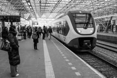 08.05 to Rotterdam Centraal (std70040) Tags: train trainstation station railwaystation electrictrain emu zaandam