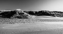 Texel in Black & White (tvdijk19) Tags: teunvandijk landscape sea zee eiland strand beach blackandwhite sunny sunlight structuresinthesand texel fuji travel reizen bw