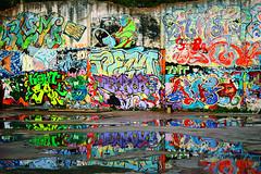 i murales della snia e l'acqua (duegnazio) Tags: italia italy lazio roma rome duegnazio canon40d puddle pozzanghera riflesso reflection murales muro wall streetart colori colors snia csoa prenestina centrosociale