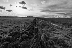The Fallow and The Fertile (RagbagPhotography) Tags: fallow fertile land agriculture field grass mud ploughed fence line split clouds oldloan kinglassie leslie glenrothes bloodyfoots fife scotland mono monochrome blackandwhite black white
