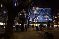 Sloane Square (Spannarama) Tags: sloanesquare night evening dark lowlight illuminated christmaslights christmas london uk trees branches bench