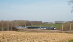 TMST (SylvainBouard) Tags: train railway eurostar tmst