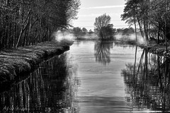 All Reflective (Alfred Grupstra) Tags: nature reflection blackandwhite water tree river lake landscape outdoors scenics tranquilscene pond nopeople nonurbanscene ruralscene beautyinnature watersedge