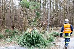"""Sturmtief """"Eberhard"""" Wiesbaden/Rheingau-Taunus 10.03.19 (Wiesbaden112.de) Tags: b417 dennisaltenhofen feuerwehr orlen sturm sturmschaden taunusstein umgestürzterbaum unwetter wiesbaden112"""