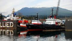 Allied shipyard vessels (D70) Tags: allied shipyard vessels ccgs gordon reid is midshore fisheries patrol vessel canadian coast guard tug seawarrior seaspanking islandtugger