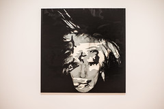 'self-portrait (camouflage) 1986 andy warhol (pbo31) Tags: bayarea california nikon d810 color march 2019 boury pbo31 sanfrancisco city sfmoma soma art museum contemporary painting