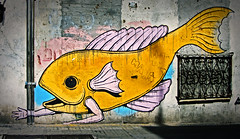 Graffiti in Montevideo Fishman (Alexander H.M. Cascone [insta @cascones]) Tags: south america southamerica uruguay montevideo art street wall graffiti streetart city urban fish arms hands man struggling creature deformed swim crawl