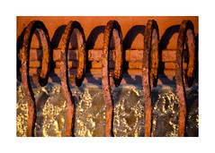 rusty fence (Armin Fuchs) Tags: arminfuchs stpetersburg russia fence rust metal shadows water lichtkreiserln wolfiwolf 5 hff jazzinbaggies