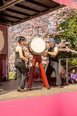 CherryBlossomDC2019-683.jpg (carlton.colter) Tags: kizuna cherryblossomdc taiko taikotakeover sakurataikofest washington dc usa