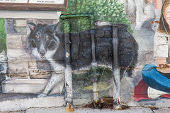 Naperville photo meetup. april 2019 (timp37) Tags: naperville photo meetup april 2019 illinois sign mural dog wolf art wall