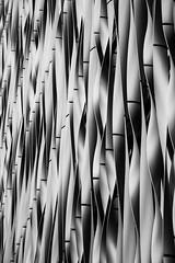 Monument Building (LG_92) Tags: london england 2018 nikon dslr d3100 architecture contemporary modern building curves lines facade louvre shading blackandwhite blackwhite monochrome bw