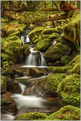 Off The Beaten Path (rssii) Tags: nature landscape water waterfall longexposure green forest nationalpark solduc olympicnationalpark nps washington usa olympicpeninsula smooth