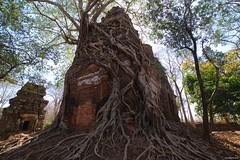 IMGP4635 The embrace of nature (Claudio e Lucia Images around the world) Tags: kohker angkorwat siemreap cambodia angkor wat nature revenge cambogia tempio khmer ancient asceta pentax pentaxart tree roots ficus tomb rider lara croft statue winner power legno rovine pentaxk3ii sigma sigmalens sigma1020 sigmaart albero embrace embraceofnature