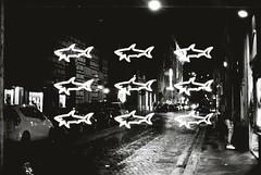 Night Multiple Exposure In Rome (goodfella2459) Tags: nikonf4 afnikkor50mmf14dlens kodaktrix400 35mm blackandwhite film night analog roma multipleexposure doubleexposure experimental abstract italy rome bwfp light